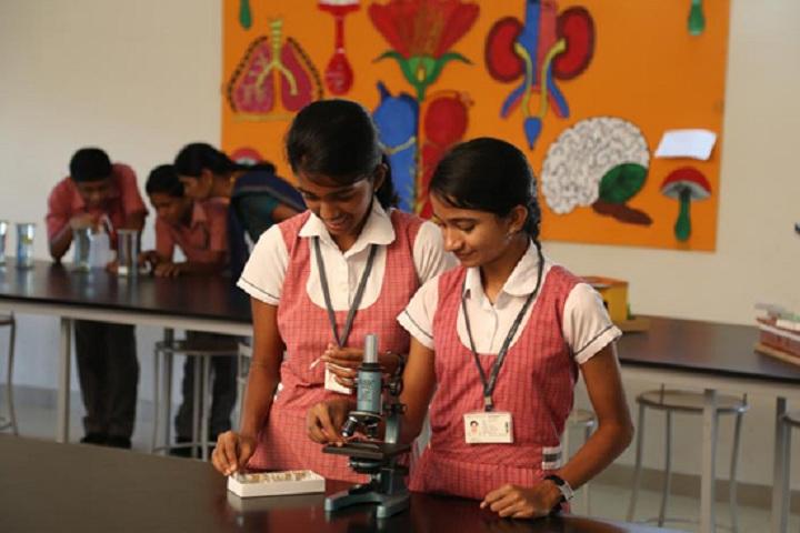 Cs Academy-Lab