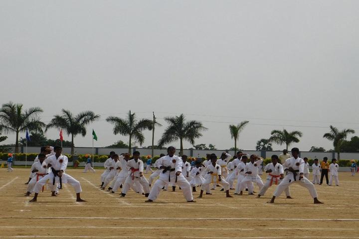 Dheeran Chinnamalai International Residential School-Karate