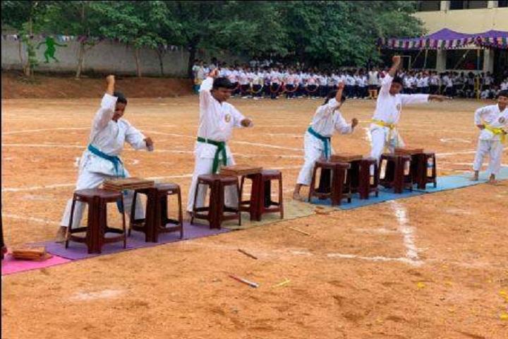 Dobbs Public School-Karate