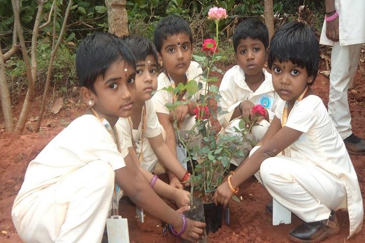Gnana Vidya Mandir-Plantation