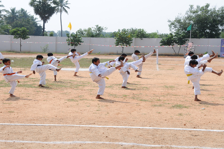 Green Valley Public School-Karate