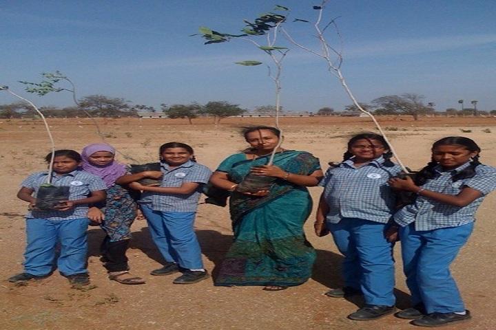Greenfield International School-Plantation