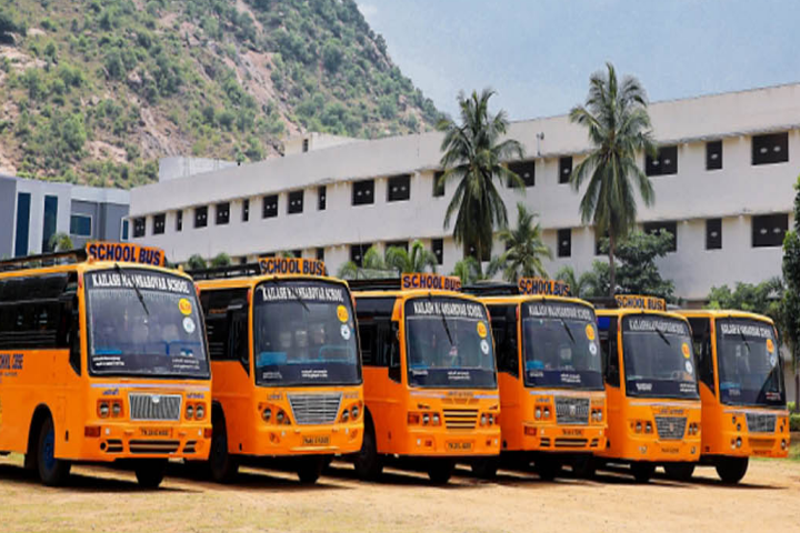 School Buses of Kailash Maansarovar School
