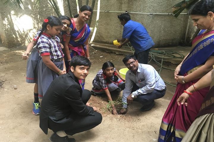 Kendriya Vidyalaya Annanagar-plantation