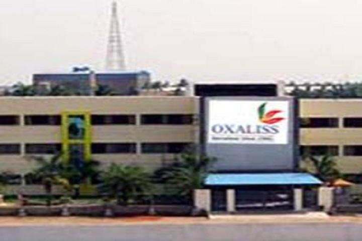 Oxaliss International School-School View