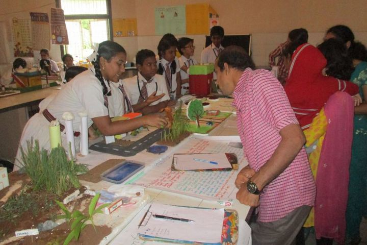Boon School-Science fair