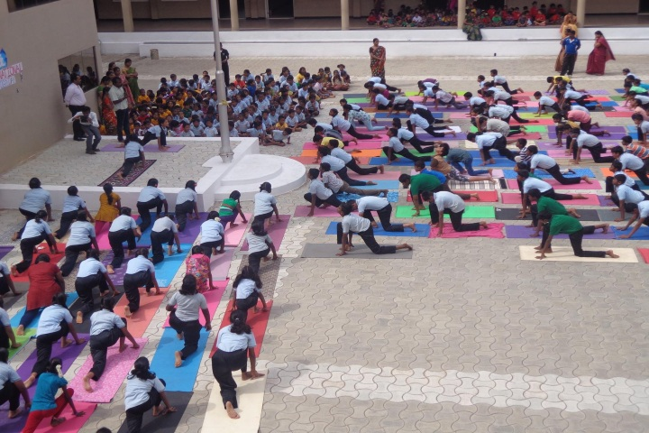Pon Vidya Mandir Senior Secondary School-Activity Day