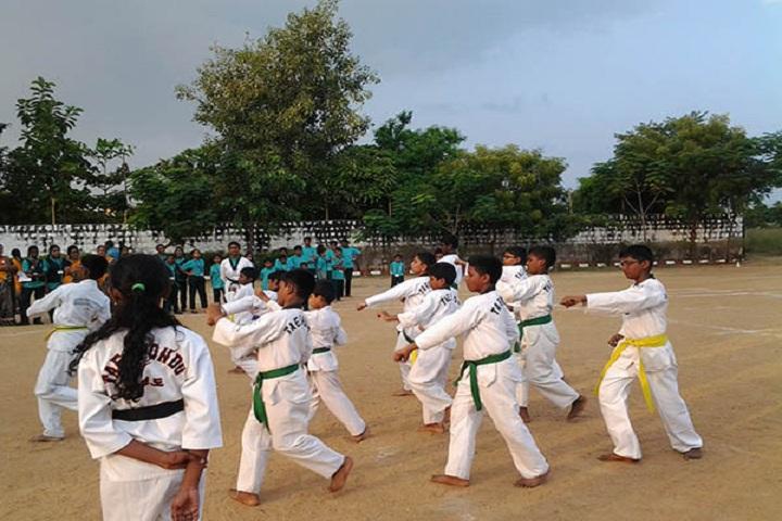 Santhanam Vidhyalaya-Karate