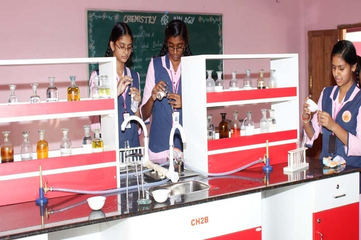 SAV Balakrishna School- Chemistry Lab