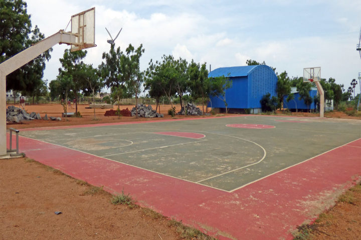 SAV Balakrishna School-Play Ground