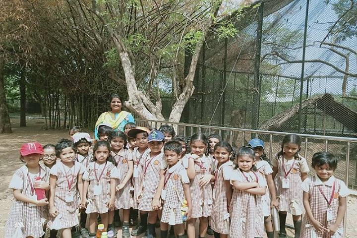 Shri B.S.Mootha Girls Senior Secondary School - UKG trip