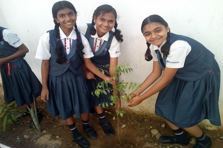sri chaitanya techno school-activity
