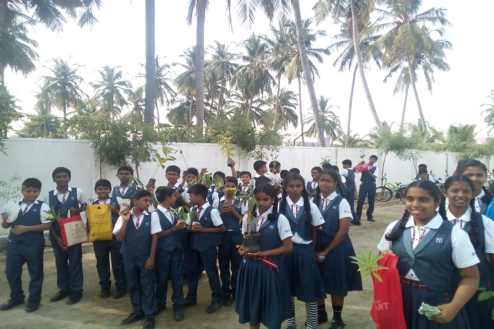 sri chaitanya techno school-plantation