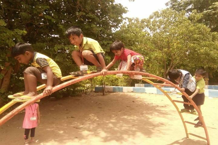 Star School- Kids Play Park