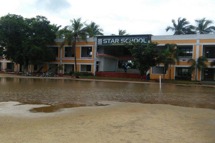 Star School- School Campus