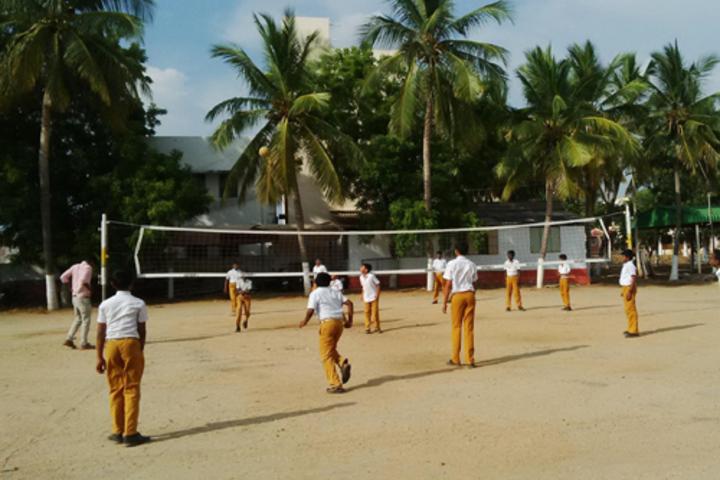 Star School- Sports