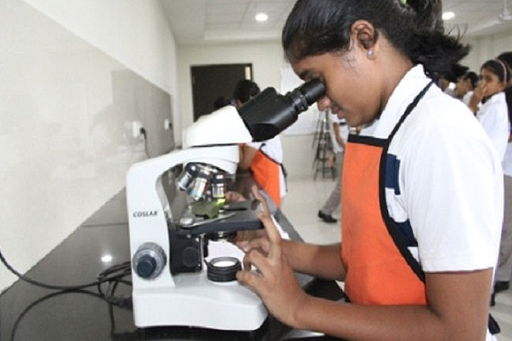 The Indian Public School-Lab