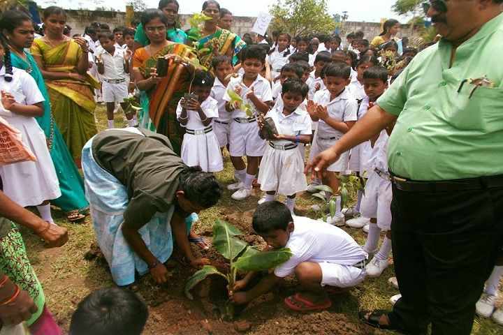 VKM Vidhyalaya School-Swachh Bharath