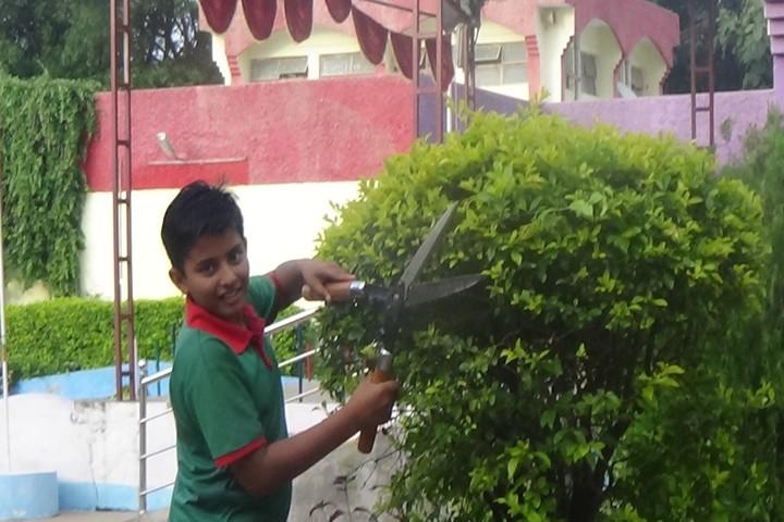 Jawahar Navodaya Vidyalaya-Green Crops