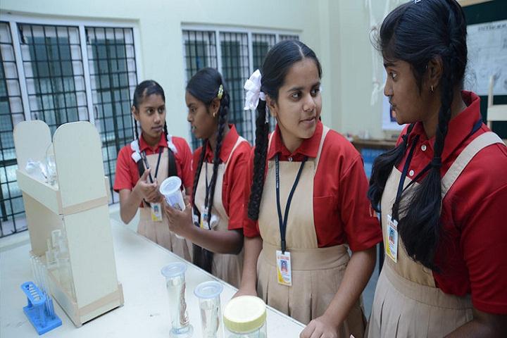 Mount Carmel Global School-Science-Lab