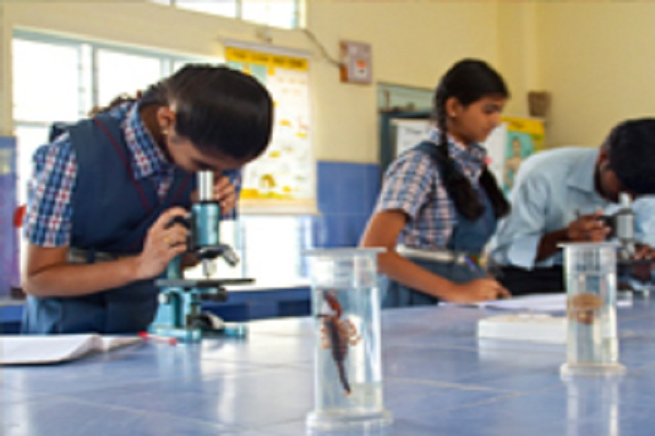 Paramita Heritage School-Laboratory