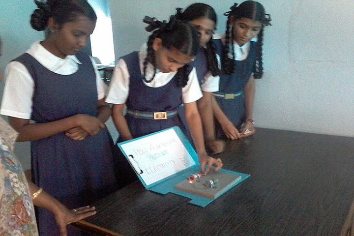 Shivaji Vidya Peeth High School-Science Activity