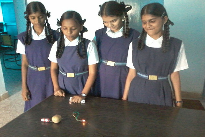Shivaji Vidya Peeth High School-Experiment