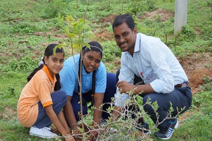 Shloka School-Plant a Tree program