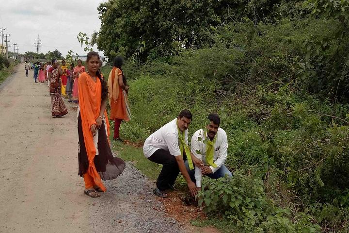 Sree Vidyanikethan High School-Others Plantation