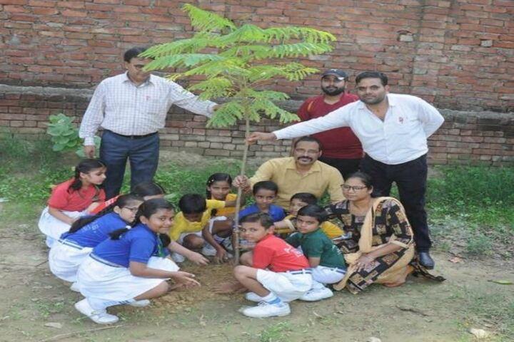 A P Public School-Tree Plantaion