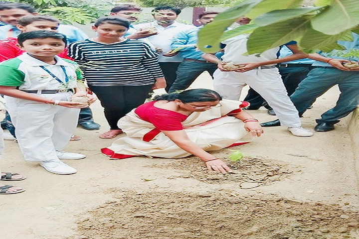 Adarsh Vidya Mandir -Plantation