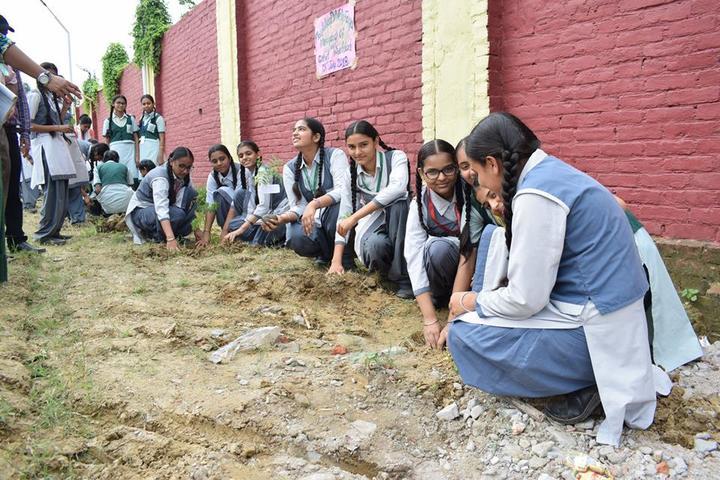 Ajmani International School - Cleanliness In School