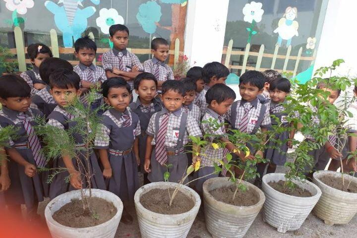 Akshar Jyothi Public School - Tree Pantations