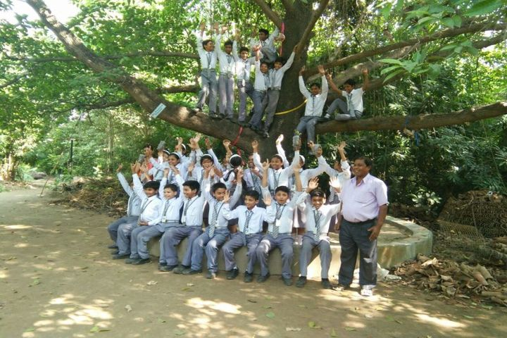S R Vidyapeeth-Activity
