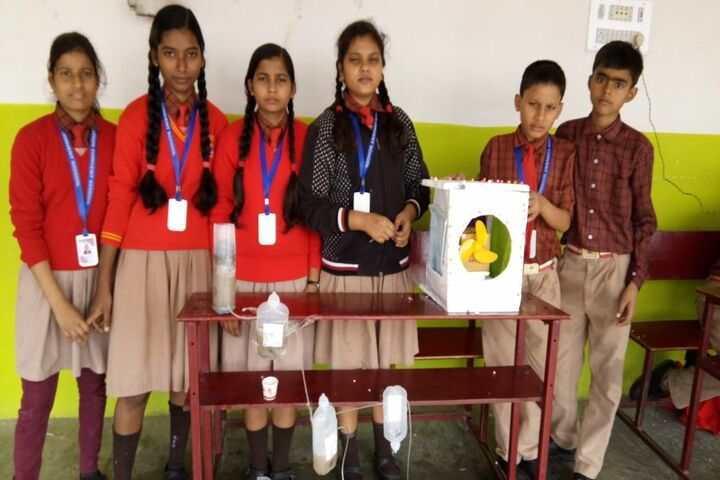 Ambition Convent School- Science Exhibhitions