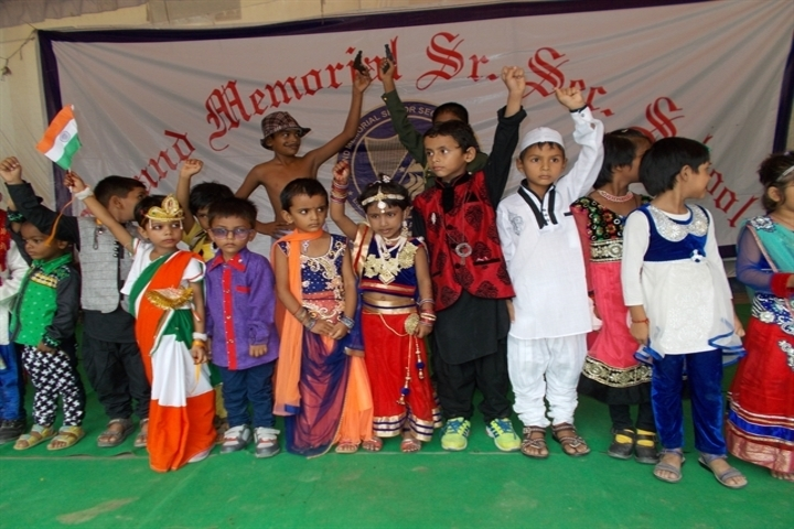 Anand Memorial Academy - Fancy Dress