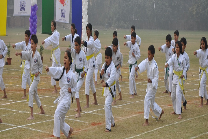 ANWAR PUBLIC SCHOOL-Karate Activity