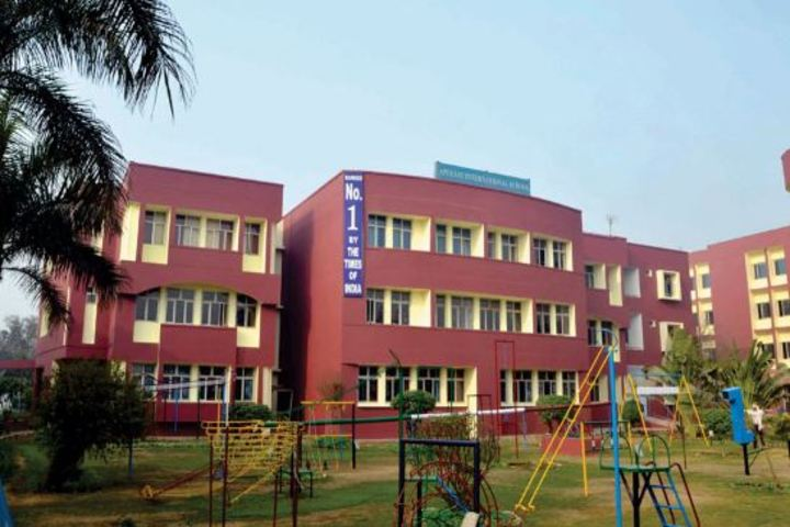 Apeejay International School- School Outloook