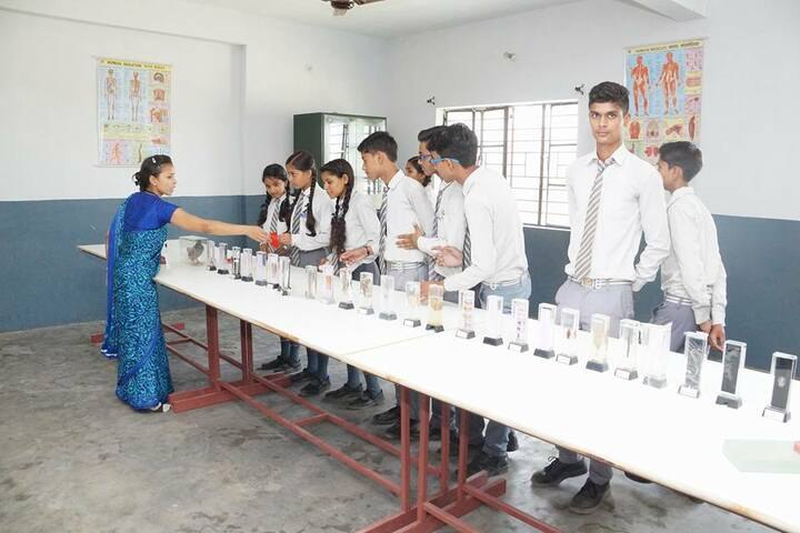 B N Public School-Biology Lab
