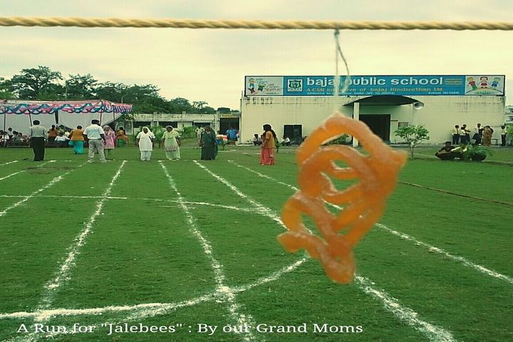 Bajaj Public School-Play Ground