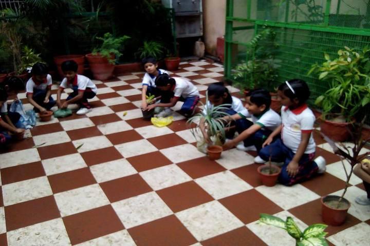 Bal Vidyalaya Madhyamik School- Plantation