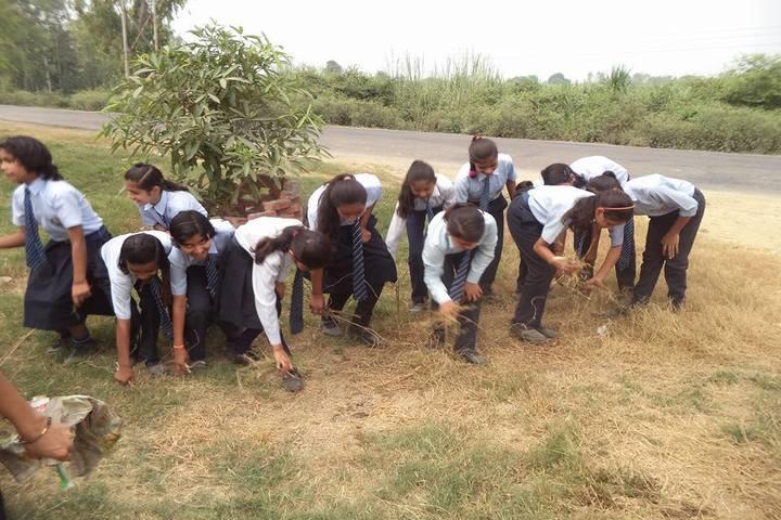 Bhashkar International School-Swachh Bharath