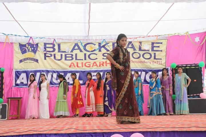 Black Dale Public School-Fashion Show