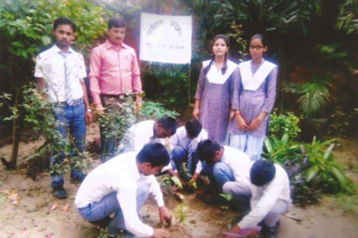 Blooming Buds English School-Tree Plantation
