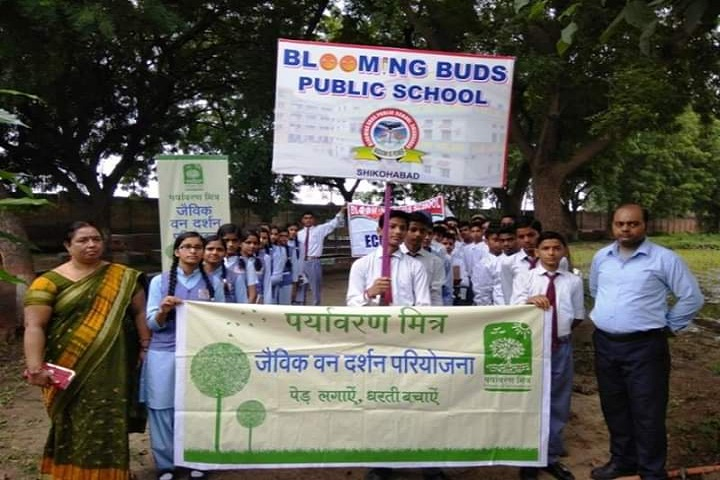 Blooming Buds Public School-Rally