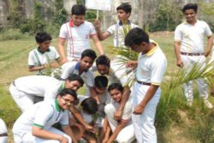 Central Academy Senior Secondary School-Plantation Activity