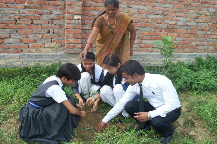 Central Public School -Greenary Activity