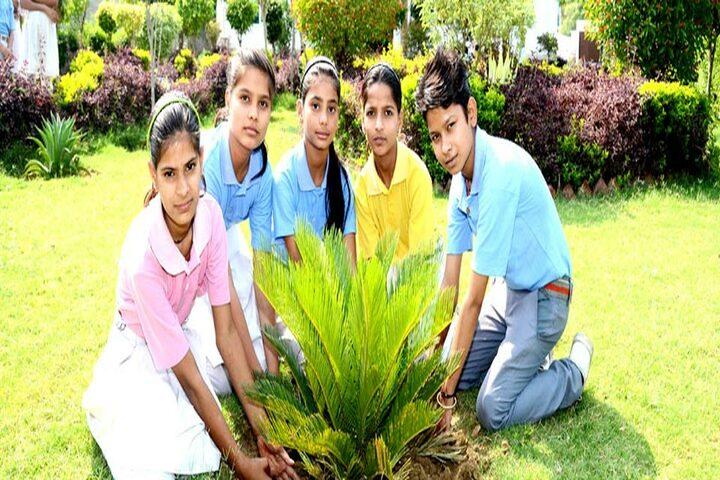 Chetan International School-Tree Plantation
