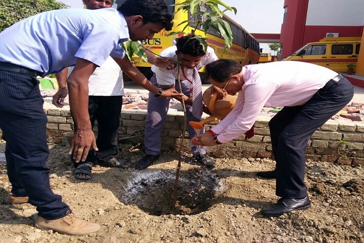 Columbus International School-Tree Plantation