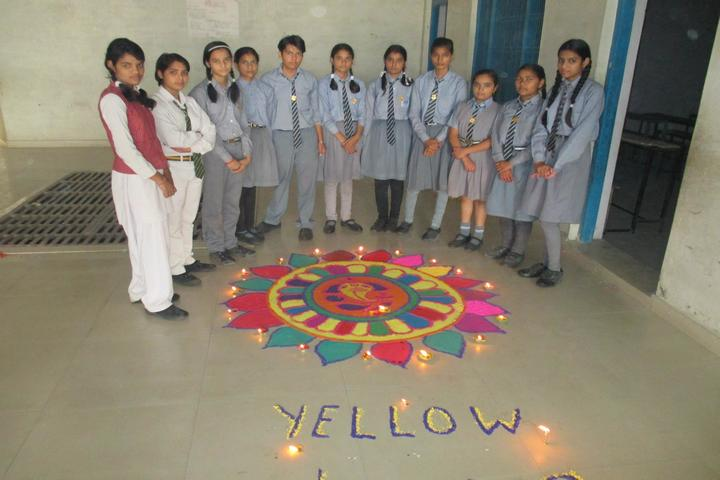D S Public School-Activity